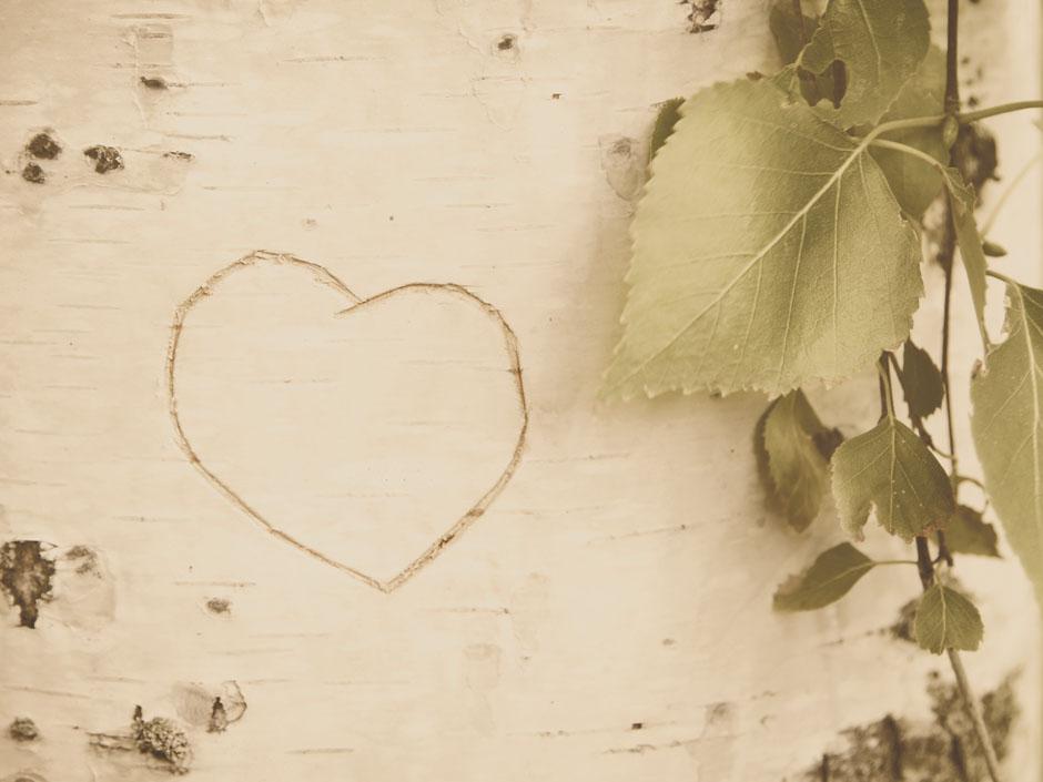 Liebe & Leidenschaft
